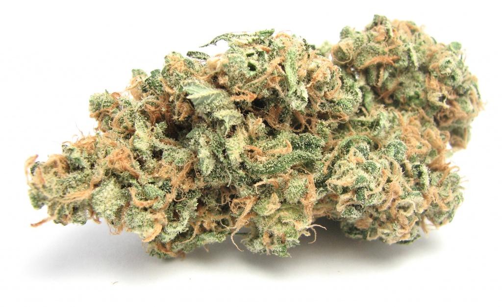 Choosing a Medical Marijuana Dispensary